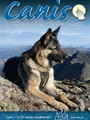 Canis 11/2010